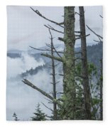 Smokey Mountain Forest No.612 Fleece Blanket