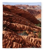 Snow Canyon 2 Fleece Blanket