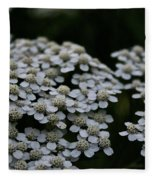Snow Sport Yarrow Fleece Blanket