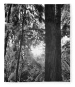 Snowy Forest Bw Fleece Blanket