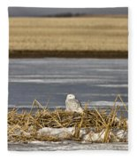 Snowy Owl Perched Frozenpond Fleece Blanket