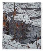 Snowy Pond Fleece Blanket