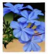Soft Blue Plumbago  Fleece Blanket