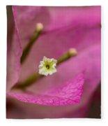 Soft Touch Fleece Blanket