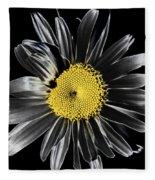 Solarized Daisy Fleece Blanket