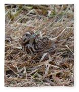 Song Sparrow Fleece Blanket