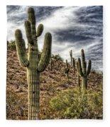 Sonoran Desert II Fleece Blanket