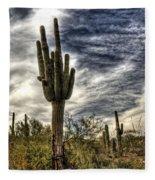 Sonoran Desert Iv Fleece Blanket