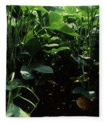 Soybean Leaves Fleece Blanket