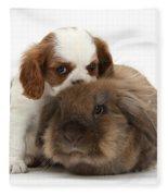 Spaniel Puppy And Rabbit Fleece Blanket