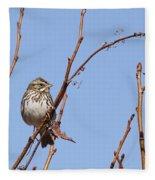Sparrow On Blue Fleece Blanket