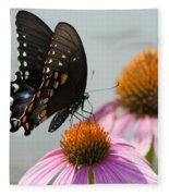 Spicebush Butterfly On Echinacea Fleece Blanket