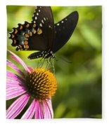 Spicebush Swallowtail Butterfly And Coneflower Fleece Blanket