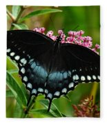 Spicebush Swallowtail Din038 Fleece Blanket