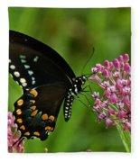 Spicebush Swallowtail Din039 Fleece Blanket