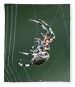 Spider - The Spinner Fleece Blanket