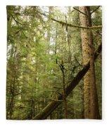 Spirit Of The Pacific Northwest Fleece Blanket