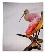 Spoonbills Fleece Blanket