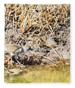 Spotted Sandpiper At The Canal Fleece Blanket