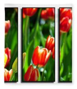 Spring Beauty Triptych Series Fleece Blanket