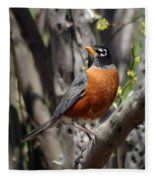 Spring Robin Fleece Blanket
