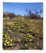 Spring Surprise Franklin Mountains Fleece Blanket