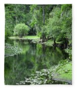 Springtime On The Lake Fleece Blanket