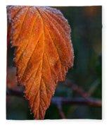 Sprinkled Frost Fleece Blanket