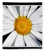 Square Daisy - Close Up 2 Fleece Blanket