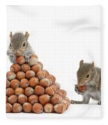 Squirrels And Nut Pyramid Fleece Blanket