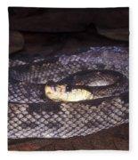 St. Lucia Pit Viper Fleece Blanket