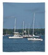 St. Mary's River Fleece Blanket