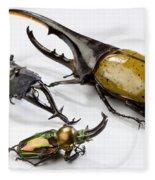 Stag Beetles Fleece Blanket