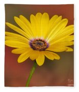 Stand Tall Fleece Blanket