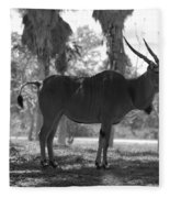 Standing Tall In Black And White Fleece Blanket