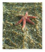 Starfish In Shallow Water Fleece Blanket