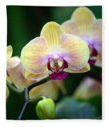 Stem Of Orchids Fleece Blanket