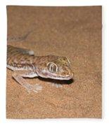 Stenodactylus Petrii Or Dune Gecko Fleece Blanket