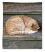 Step Sleeper Fleece Blanket
