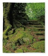 Steps In The Wild Garden, Galnleam Fleece Blanket