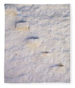 Steps Of The Wall Fleece Blanket