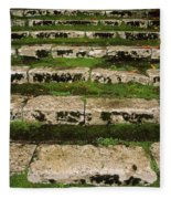 Steps On The Central Walk, Lismore Fleece Blanket