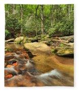 Stone Mountain Stream Fleece Blanket