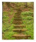 Stone Step Trail 1 Fleece Blanket