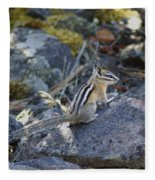 Straight Tailed Chipmunk On A Rock Fleece Blanket