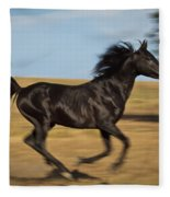Streakin' Fleece Blanket