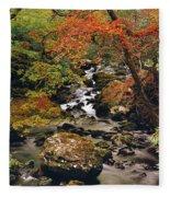 Stream Near Glengariff, Co Cork, Ireland Fleece Blanket