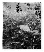 Streched Trees In Black And White Fleece Blanket