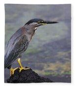 Striated Heron Fleece Blanket
