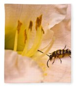 Striped Beetle On Lilly 1 Fleece Blanket